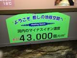 natudou-14.jpg
